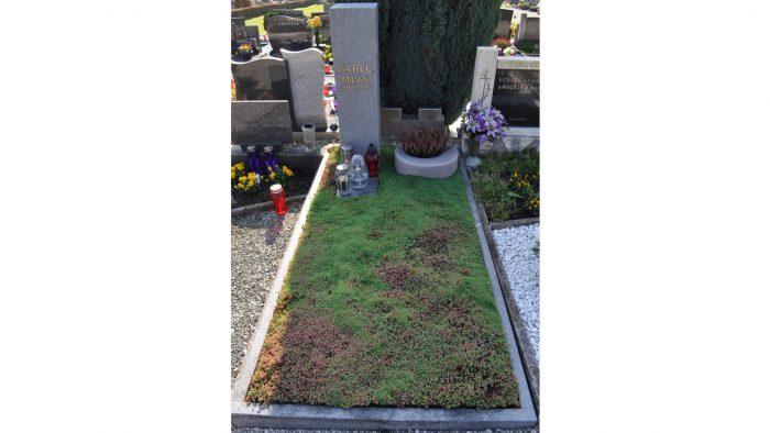 Enojni nagrobni spomenik 29