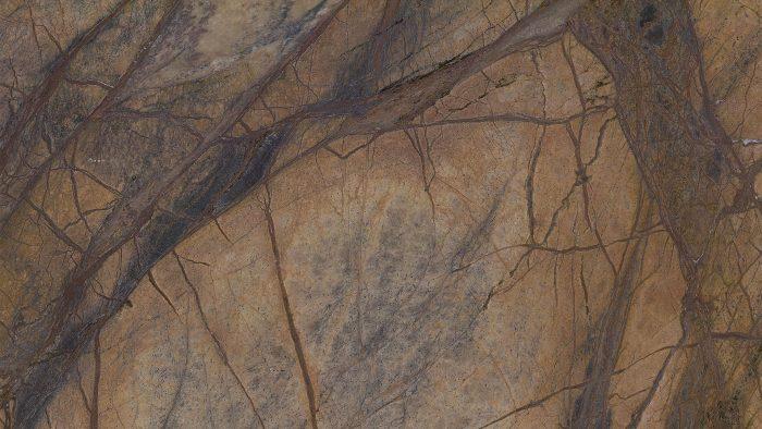 rain-forest-marmor